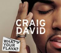 Cover Craig David - What's Your Flava?