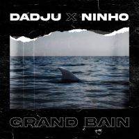 Cover Dadju x Ninho - Grand bain