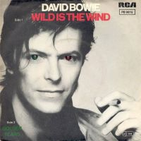Cover David Bowie - Wild Is The Wind