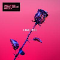 Cover David Guetta / Martin Garrix / Brooks - Like I Do