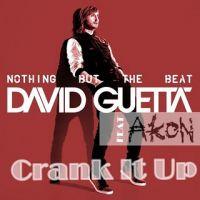 Cover David Guetta feat. Akon - Crank It Up