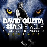 Cover David Guetta feat. Sia - She Wolf (Falling To Pieces)
