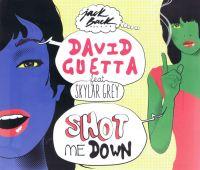Cover David Guetta feat. Skylar Grey - Shot Me Down