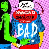 Cover David Guetta & Showtek feat. Vassy - Bad