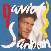 Cover David Sanborn - A Change Of Heart