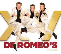 Cover De Romeo's - 15 jaar