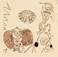 Cover Devendra Banhart - Rejoicing In The Hands