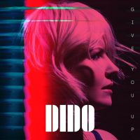 Cover Dido - Give You Up