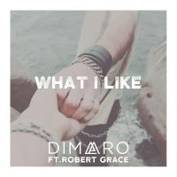 Cover Dimaro feat. Robert Grace - What I Like