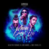 Cover Dimitri Vegas & Like Mike feat. Wiz Khalifa - When I Grow Up