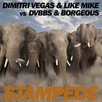 Cover Dimitri Vegas & Like Mike vs. DVBBS & Borgeous - Stampede