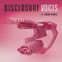 Cover Disclosure feat. Sasha Keable - Voices