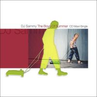 Cover DJ Sammy - Boys Of Summer