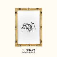 Cover DJ Snake & AlunaGeorge - You Know You Like It