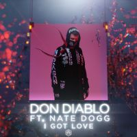 Cover Don Diablo feat. Nate Dogg - I Got Love