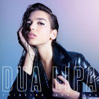 Cover Dua Lipa - Thinking 'Bout You