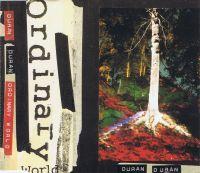 Cover Duran Duran - Ordinary World