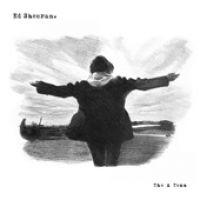 Cover Ed Sheeran - The A Team EP