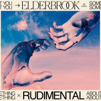 Cover Elderbrook & Rudimental - Something About You