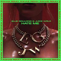 Cover Ellie Goulding & Juice WRLD - Hate Me