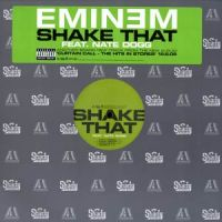 Cover Eminem feat. Nate Dogg - Shake That