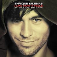 Cover Enrique Iglesias feat. Pitbull and The WAV.s - I Like How It Feels