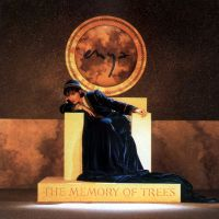 Cover Enya - The Memory Of Trees