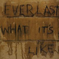 Cover Everlast - What It's Like