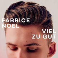 Cover Fabrice Noel - Viel zu gut