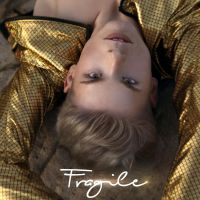 Cover Falko - Fragile