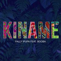 Cover Fally Ipupa feat. Booba - Kiname