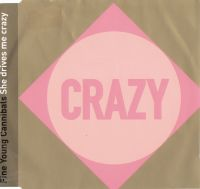 Cover Fine Young Cannibals - She Drives Me Crazy