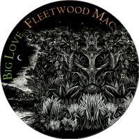 Cover Fleetwood Mac - Big Love