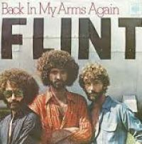 Cover Flint - Back In My Arms Again