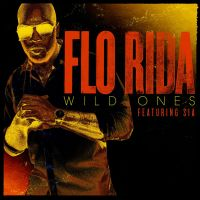 Cover Flo Rida feat. Sia - Wild Ones