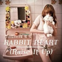 Cover Florence + The Machine - Rabbit Heart (Raise It Up)