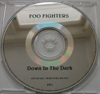 Cover Foo Fighters - Down In The Park