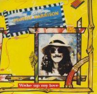 Cover George Harrison - Wake Up My Love