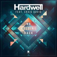 Cover Hardwell feat. Craig David - No Holding Back