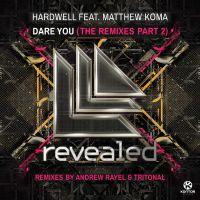 Cover Hardwell feat. Matthew Koma - Dare You