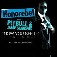 Cover Honorebel feat. Pitbull & Jump Smokers - Now You See It