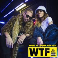 Cover Hugel feat. Amber Van Day - WTF
