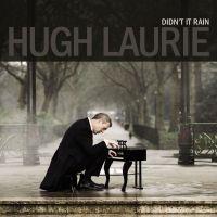 Cover Hugh Laurie - Didn't It Rain