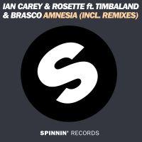 Cover Ian Carey & Rosette feat. Timbaland & Brasco - Amnesia