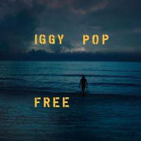 Cover Iggy Pop - Free