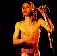 Cover Iggy & The Stooges - Search And Destroy
