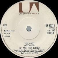 Cover Ike & Tina Turner - Feel Good