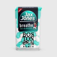 Cover Jax Jones feat. Ina Wroldsen - Breathe