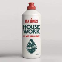 Cover Jax Jones feat. Mike Dunn & MNEK - House Work