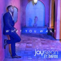 Cover Jay Sean & Davido - What You Want